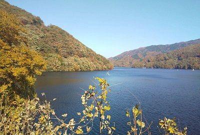 草木ダム展望台から草木湖紅葉の景色