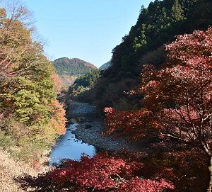 渡良瀬渓谷の紅葉