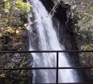 トロッコ列車から見えた滝