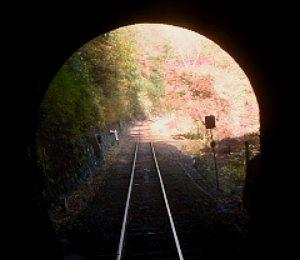 運転席横窓から見たトンネルの景色