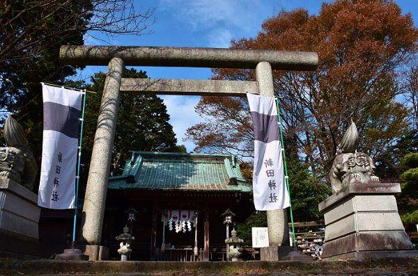 新田神社鳥居と狛犬