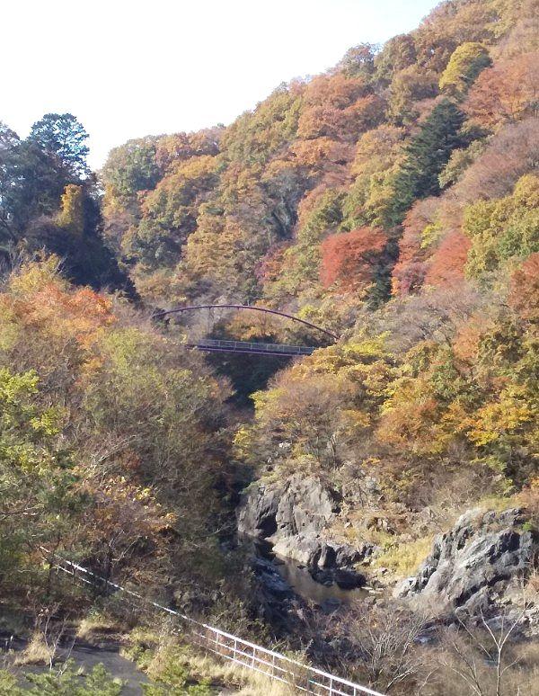 草木ダム下の紅葉
