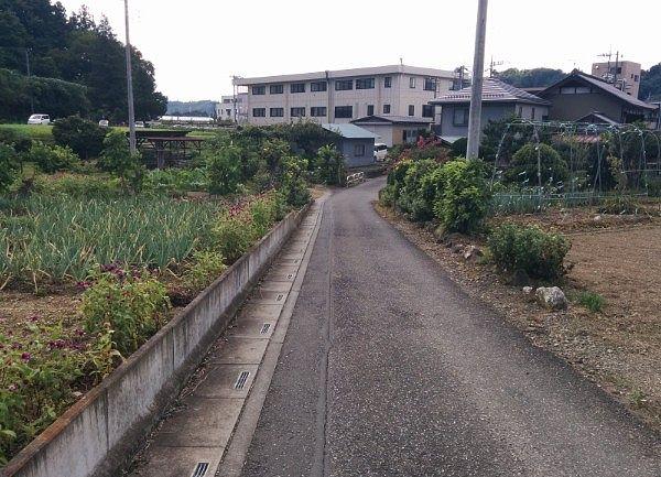 小川山語歌堂へ向かう道