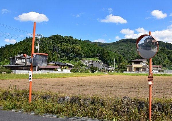 畑の向こうに見える長興寺