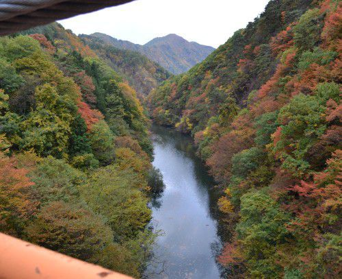 内楽橋から見た紅葉の様子