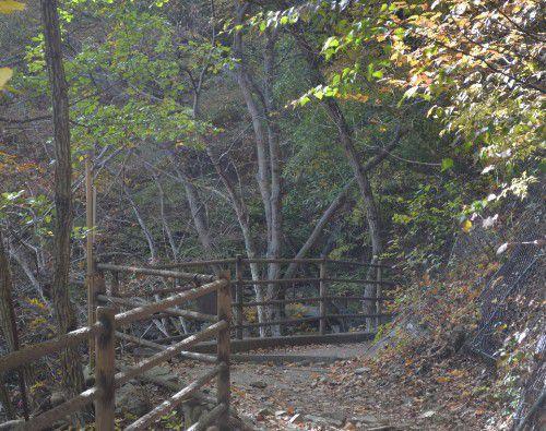 崖沿いに続いてる遊歩道の様子