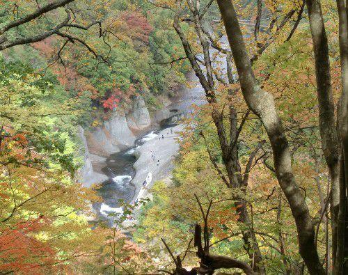 遊歩道から見える鱒飛の滝