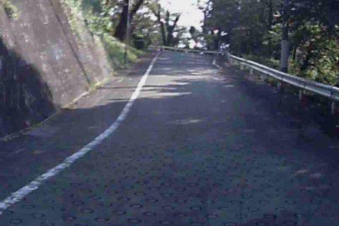 桐生が岡遊園地・動物園に向かう道路