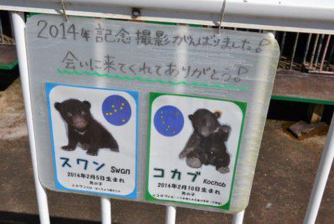小熊ゾーン