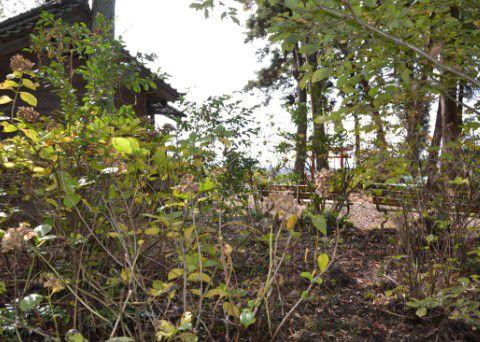 滝野神社 境内