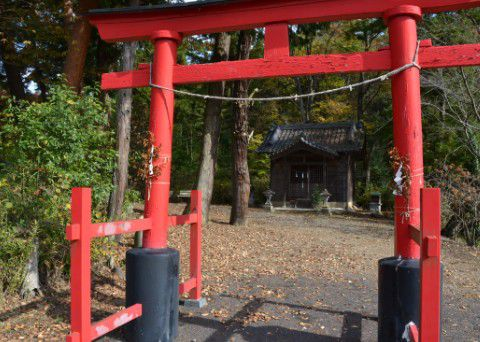 滝野神社 鳥居と拝殿
