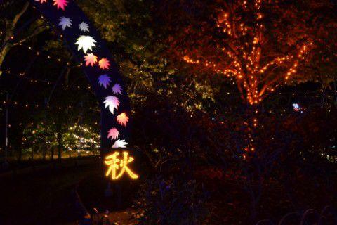 イルミネーション日本の四季「こころの故郷」秋