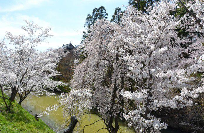 上田城のお堀の景色