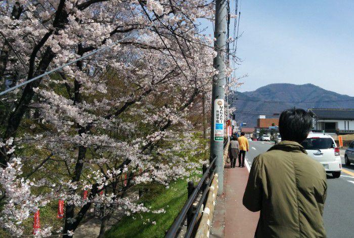 上田城跡公園脇の道路