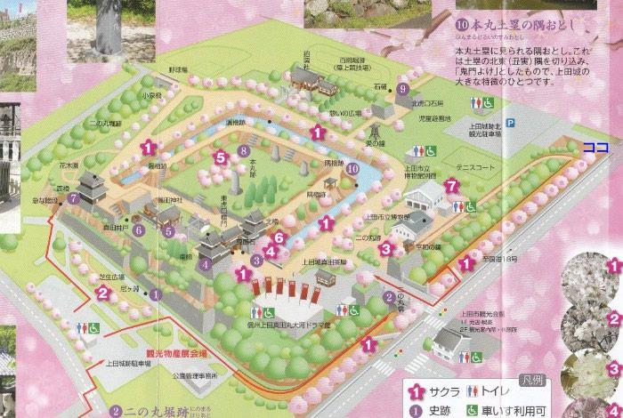 上田城跡公園内地図