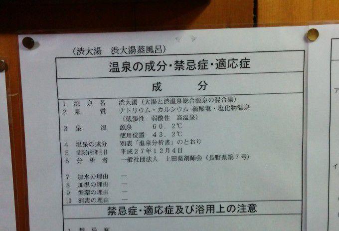 九番湯「大湯」温泉分析表