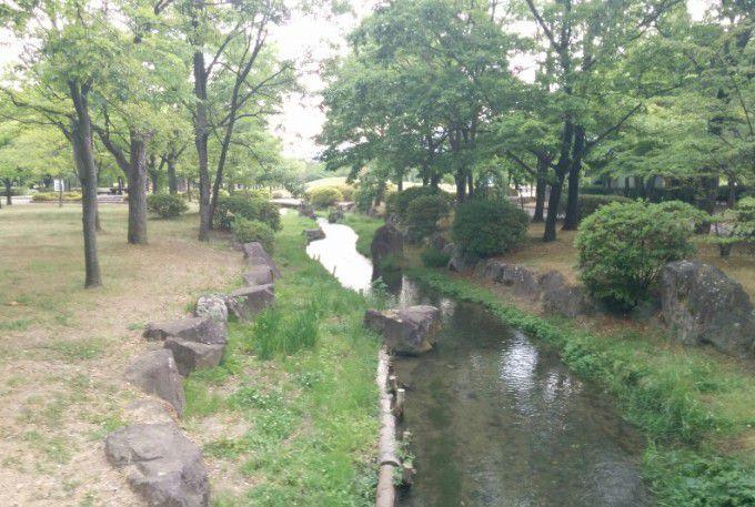 八幡原史跡公園の様子