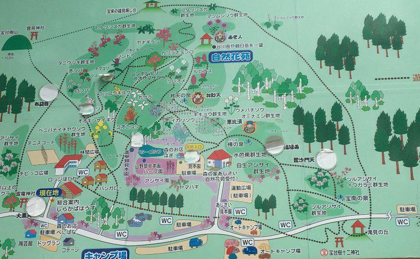 水上宝台樹キャンプ場観光地図