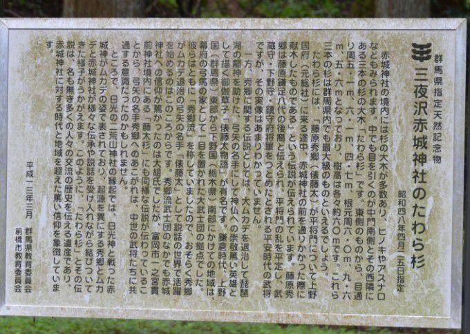 三夜沢赤城神社のたわら杉の案内