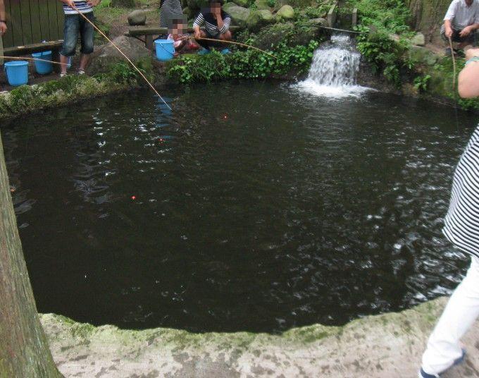 釣り堀の池