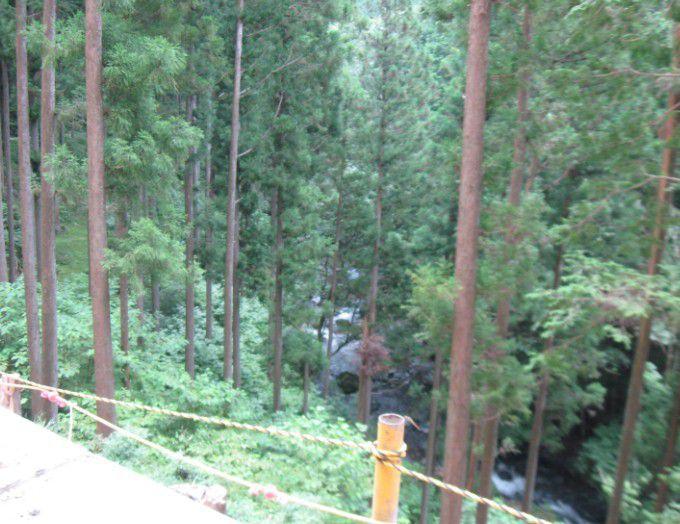 桐生川源流林の渓谷