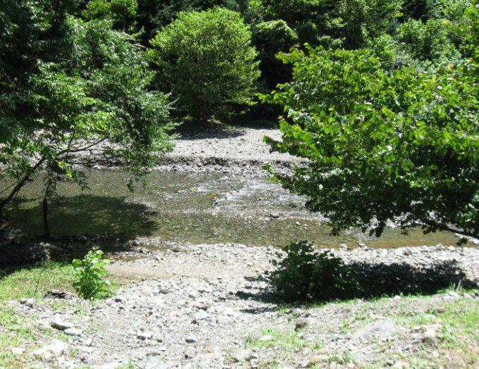 桐生川の風景