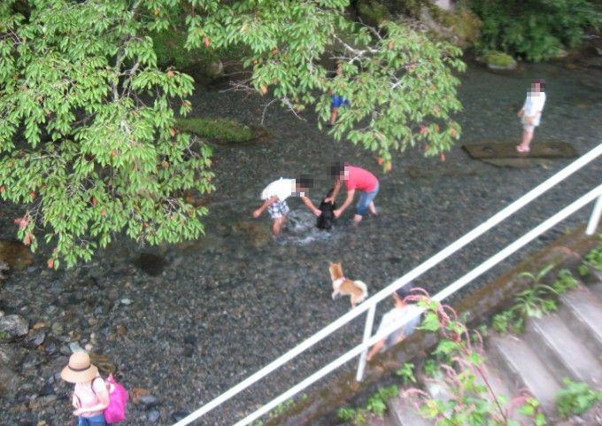 梅田ふるさとセンター前の桐生川で川遊びする人達