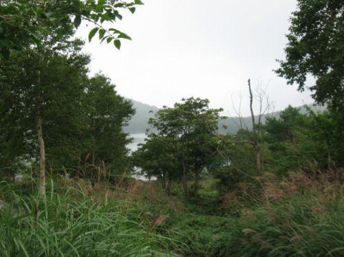 赤城山小沼