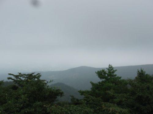 展望台からの眺め