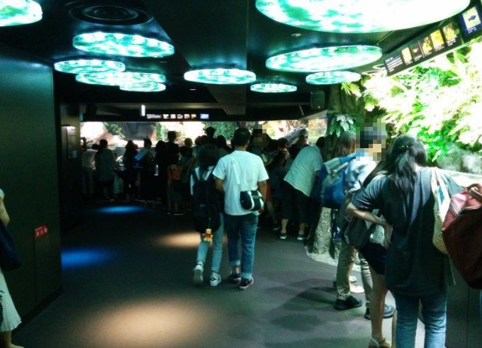 淡水魚ゾーンにいる多くの見物客の姿