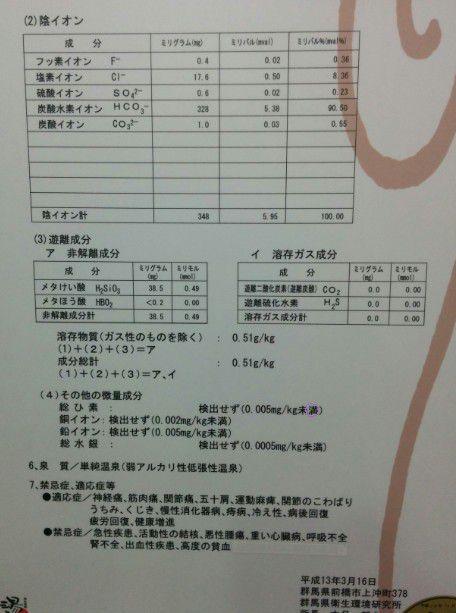 温泉分析表2