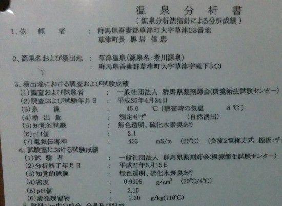 煮川の湯温泉分析表
