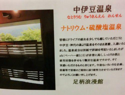 中伊豆温泉の説明