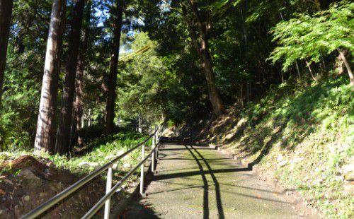 二俣城へ上がる道