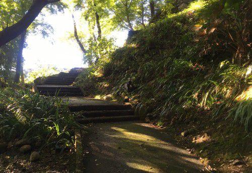 二俣城へ登る道