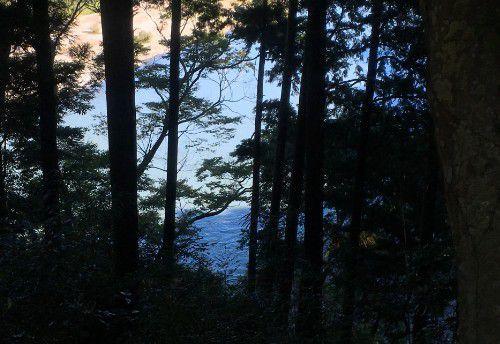 東屋からの天竜川の眺め