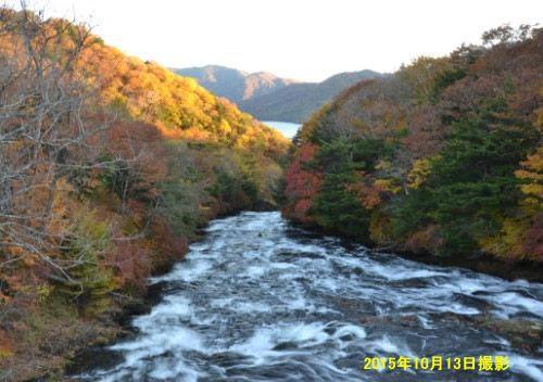2015年竜頭の滝の上の紅葉