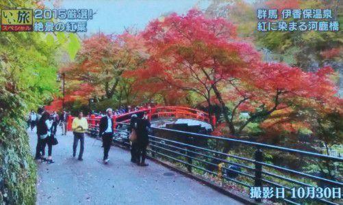 2015年10月30日河鹿橋と紅葉の様子