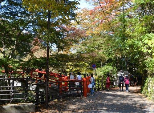 河鹿橋を見に来る観光客たち