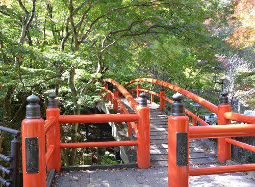緑に木々の中の河鹿橋
