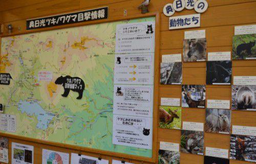 ツキノワ熊目撃情報マップ