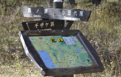 ハイキング用道案内