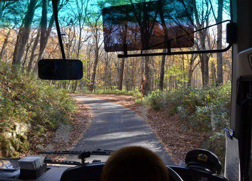 低公害バスからの風景