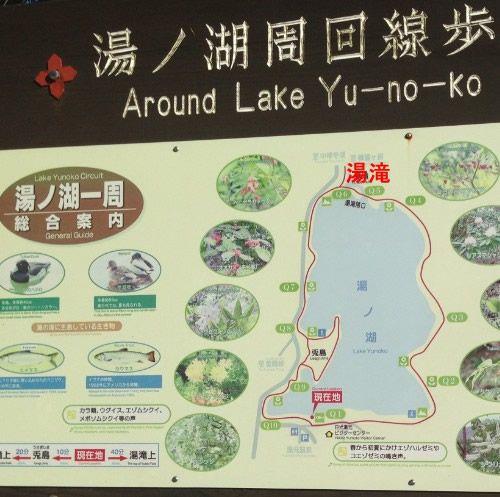 湯ノ湖周回遊歩道地図