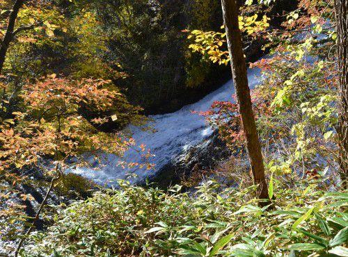 遊歩道から撮った紅葉の湯滝