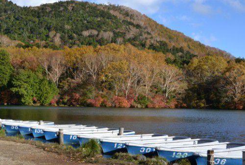 紅葉してる湯ノ湖の景色