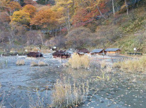 湿原と源泉地