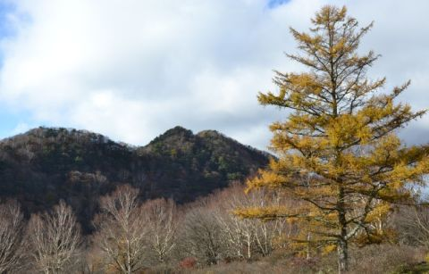 晩秋の赤城山総合観光所案内所付近の景色