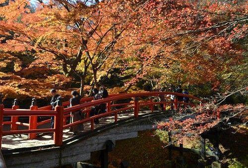 紅葉してる河鹿橋にいる大勢の観光客