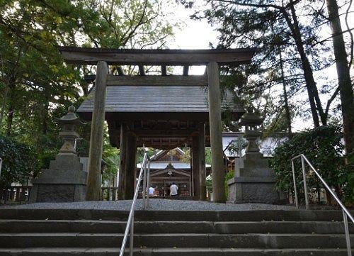 鳥居の先に見える拝殿